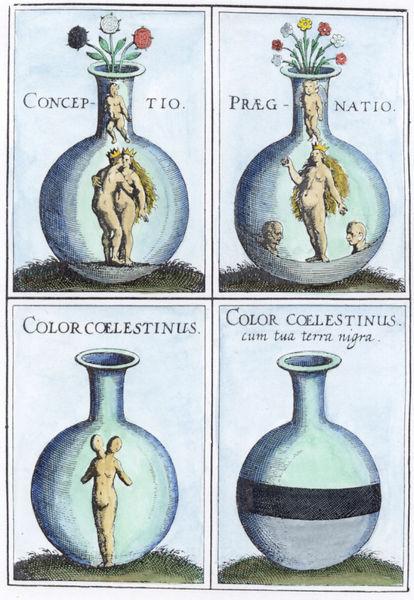 Mylius Version Of Donum Dei Series Coloured
